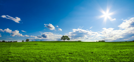beautiful landscape with a lone tree, clouds and blue sky Stock Photo