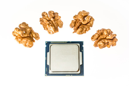 four-core processor on light background When the cores are symbolized by nut cores