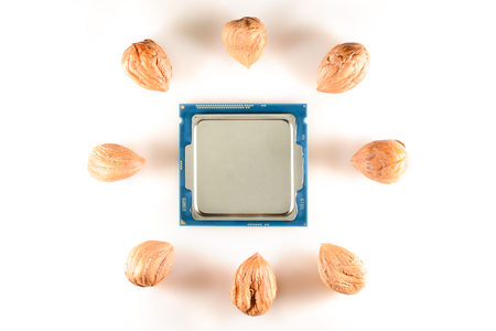 eight-core processor on light background When the cores are symbolized by nut cores