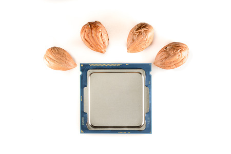 harddisc: four-core processor on light background When the cores are symbolized by nut cores