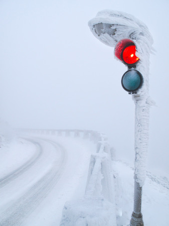frostbitten: red traffic light after the closing snowy road