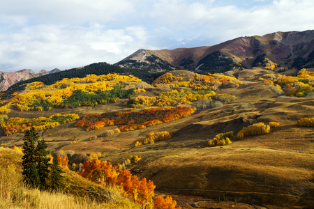 Fall Colors Near Mount Crested Butte Colorado Stock Photo