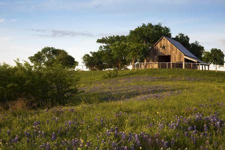 Granero de madera en el Bluebonnet Trail cerca de Ennis, Texas