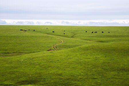 Rolling Prairies in Flint Hills Of Kansas