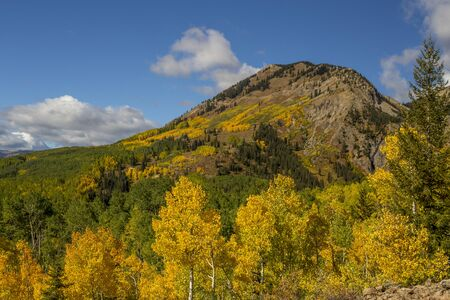 Autumn Colors on the Mountain on Ohio Pass, Near Crested Butte, Colorado.