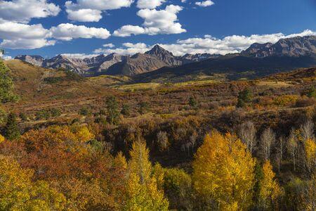 Colorado Aspen Fall Color in the Rocky Mountains, Kebler Pass.