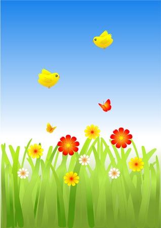 Flowers butterflies and birds