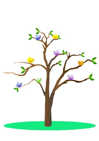 perched: Birds in tree