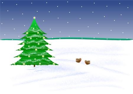 robins: Christmas scene with snow, tree and robins