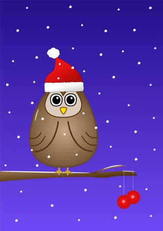 Owl at Christmas  photo