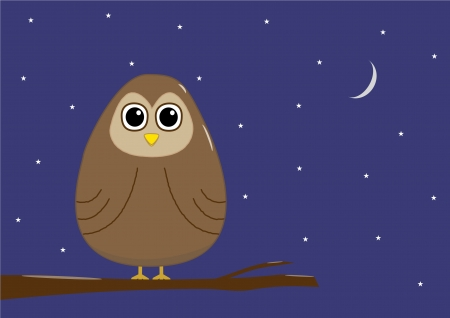 Cartoon owl at night Vector