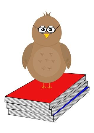 Bird with reading books Illustration
