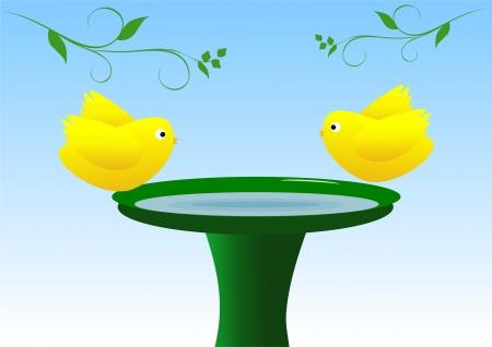 Birds on birdbath