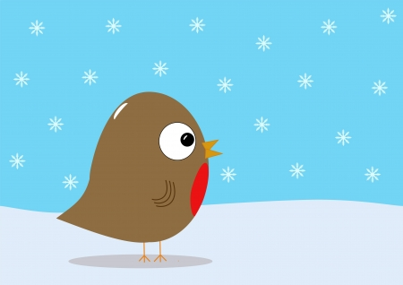 robin bird: Christmas robin and snow