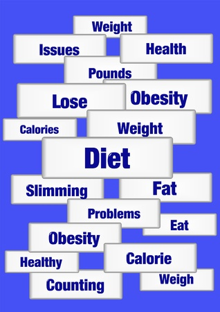 다이어트 및 체중계