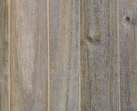 Wood panel background Stock fotó