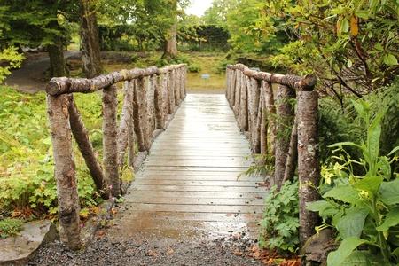 Wooden bridge in gardens at Dunvegan Castle, Isle of Skye, Scotland photo