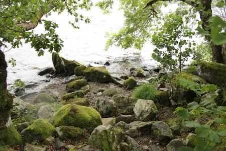 Shore of Loch Ness, Inverness, Scotland photo