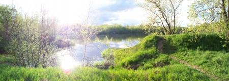 pond and sun