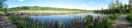morass: super wide panoramic marsh