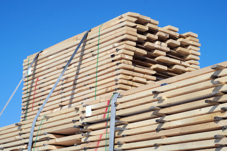 lumbering: construction lumber wood plank stack forest product Stock Photo