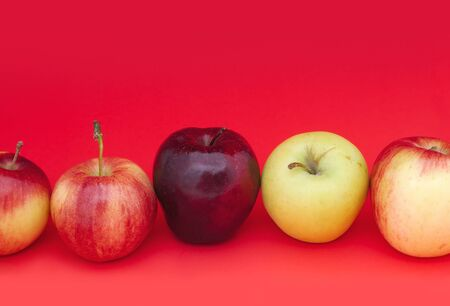many kinds of apples on red background organic fruits