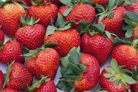 fresh strawberry red fruits background organic agriculture market
