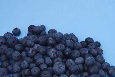 blueberries on blue background fresh organic berry fruit
