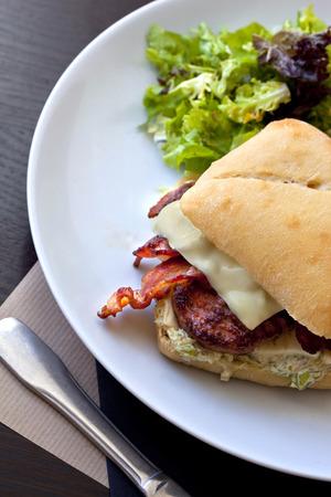 gastronomic: Gastronomic hamburger and green salad