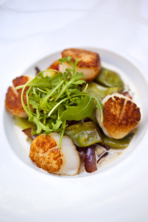 Saint-Jacques scallops, peppers and green salad on a plate Standard-Bild