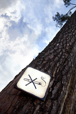 No smoking sign on a tree in the woods photo