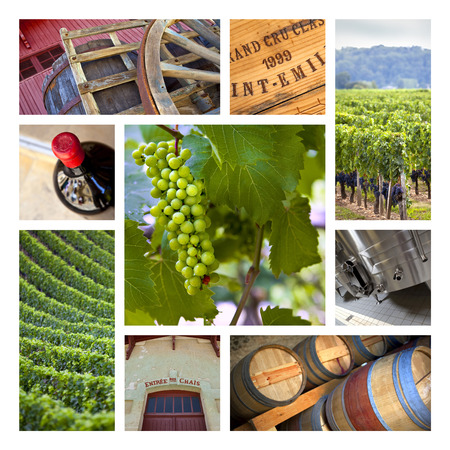 Vineyards and wineries on a collage Foto de archivo