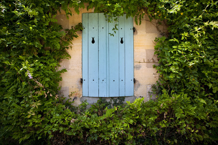 wistaria: Shutter of a countryside house