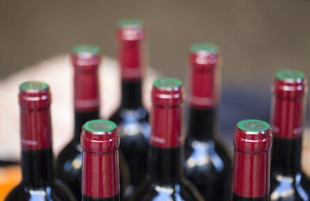 oenology: Bottles of red wine in a winery