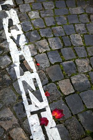 empedrado: Hojas muertas en una zona de aparcamiento en una calle pavimentada en Francia