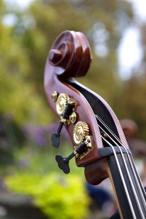 orquesta clasica: Detalle de un bajo en una orquesta cl�sica