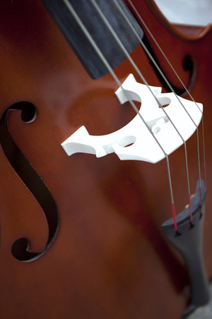 orchestre classique: Close up on a bass of a classical orchestra