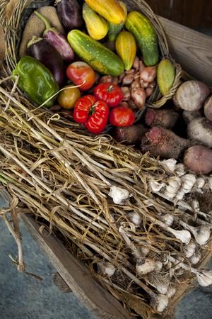 garlic: Vegetable and garlic in a wheelbarrow