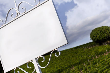 White panel in vineyards near Bordeaux