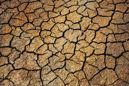Cerca de tierra seca en el sur de Francia.