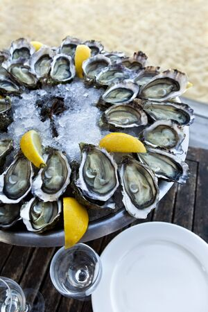 Plate of oysters on a bistro terrace facing a French beach Reklamní fotografie