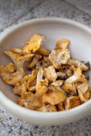 Close up of chanterelles in a terracotta bowl