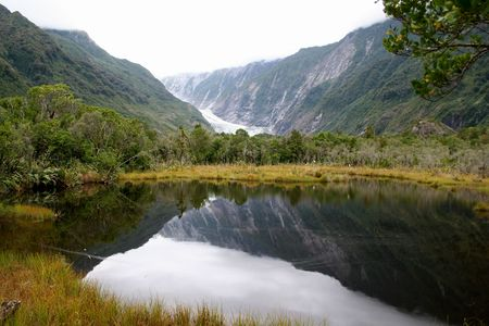 fox glacier: Fox Glacier in New Zealand