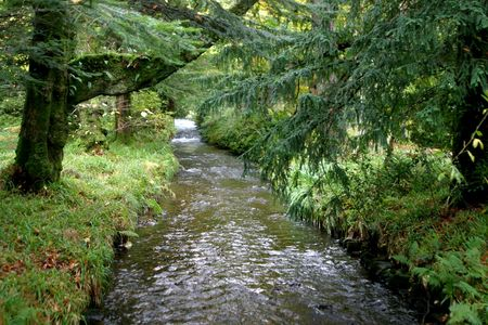 Mull: River on the Isle of Mull, Scotland