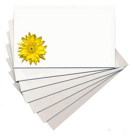 chrysanthemum on cards photo