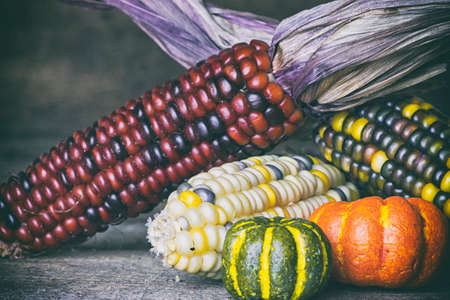gourds: Indian Corn and Autumn Gourds  on Wood Background Stock Photo
