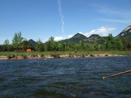 Rafting cruise through the Dunajec gorge-PolandGrass snake in the water photo