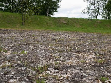 inanimate: Inanimate nature reservation Bonarka in Krakow,Poland
