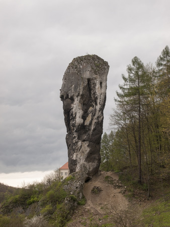 hercules: The Hercules Club in Pieskowa Skala