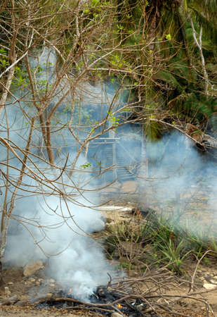 Smoke coming fron fireplaces in front of Mexican palapa bungalow in the middle of the jungle.